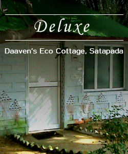 ecocoottage-deluxe