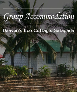 ecocoottage-group