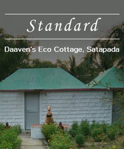 ecocoottage-standard